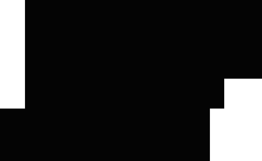 barra preta